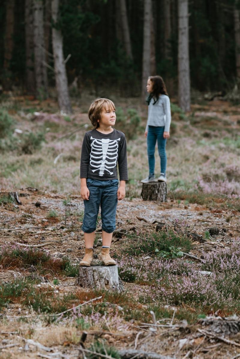 WvdK-kidneren in bos