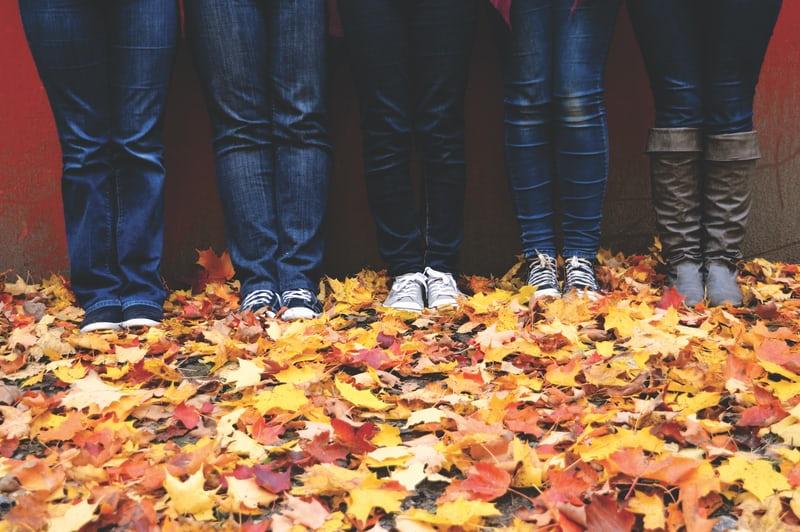 WvdK-voeteninbladeren