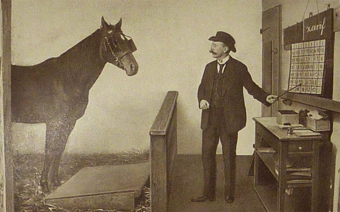 Kunnen dieren denken? Een online les over 'superslimme Hans', het paard dat kon hoofdrekenen